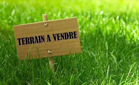terrain a vendre.jpg