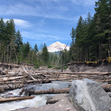 Mt Hood from the Sandy River