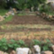 La Halte de Coat Carrec | Potage | Légumes du jardin