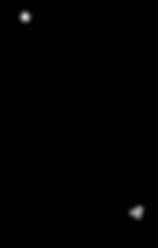 Zigfin Surfboard Logo