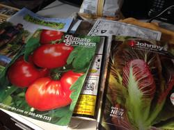 seed_catalogs.jpg