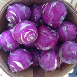 purple_kohlrabi.jpg