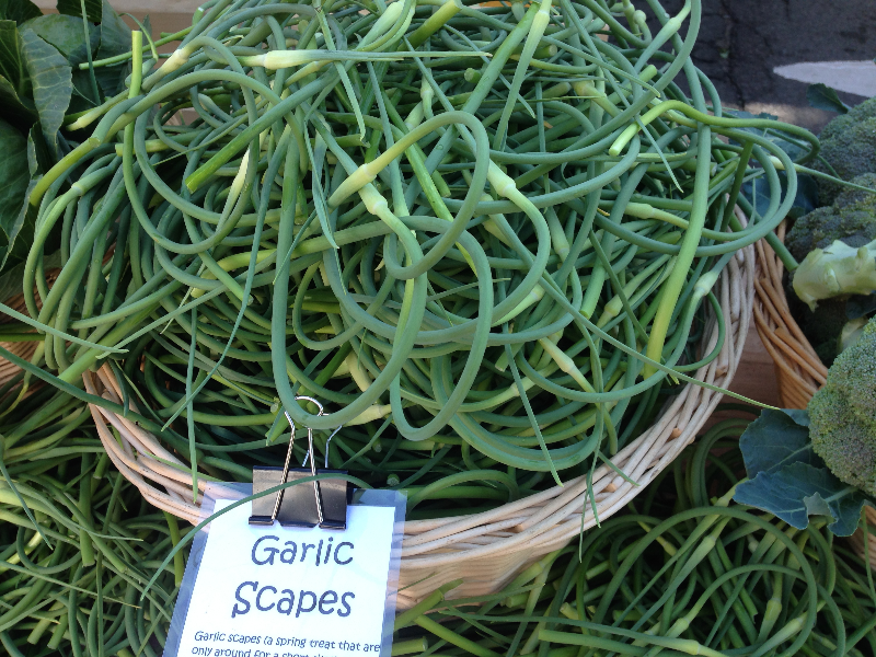 Scapes_basket.jpg