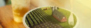 Banner SG2.jpg