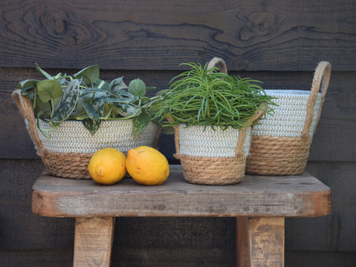 Straw basket blue.jpg