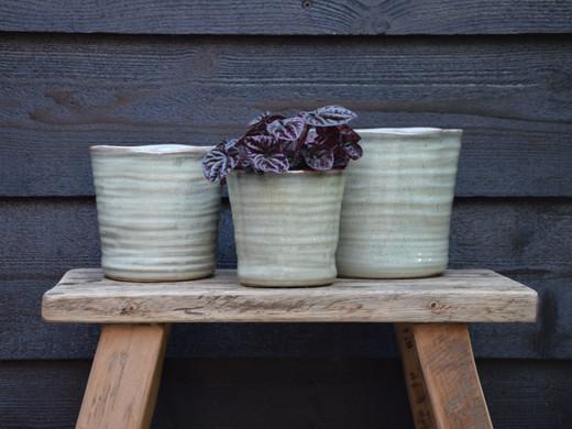 Ceramic conical mint.jpg