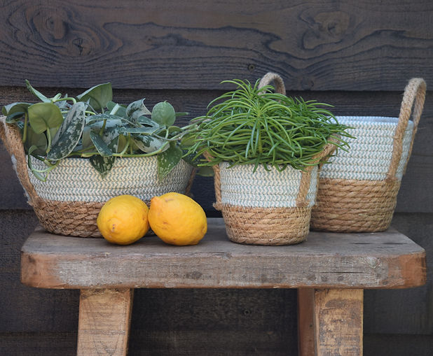 Straw Basket Jute with Blue Cotton and Lemons