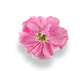 pink_flower1.png