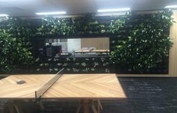 Office, Adelaide