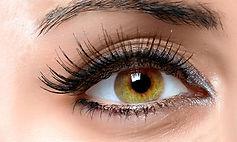 eyelashes3.jpg