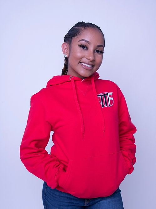 Red Unisex Regular Pullover Hoodie
