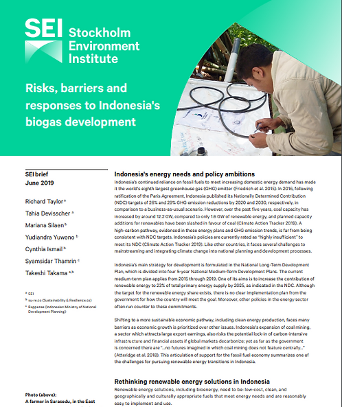 Risks, barriers and responses to Indonesia's biogas development