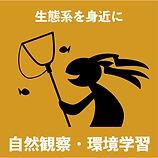 KOKOPELLI+ロゴ1-05.jpg