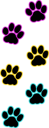cat paws.png