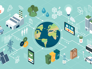 COVID-19 Blunted Small Companies' Supply Chain Sustainability Efforts