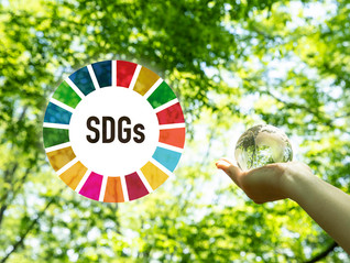 Empowering Irish Businesses to Adopt U.N. Sustainable Development Goals