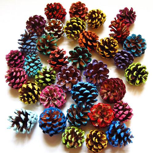 50 Small Colored Edged Pine Cones