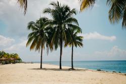 Finca La Playa Costa Rica