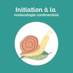 PictoInitiationALaMalacologie.jpg