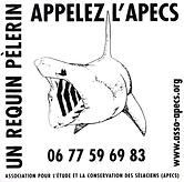 Autocollant_RP_APECS.png
