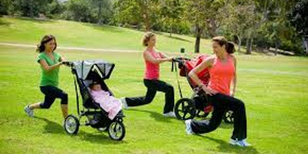 Stroller Fit  - Binbrook