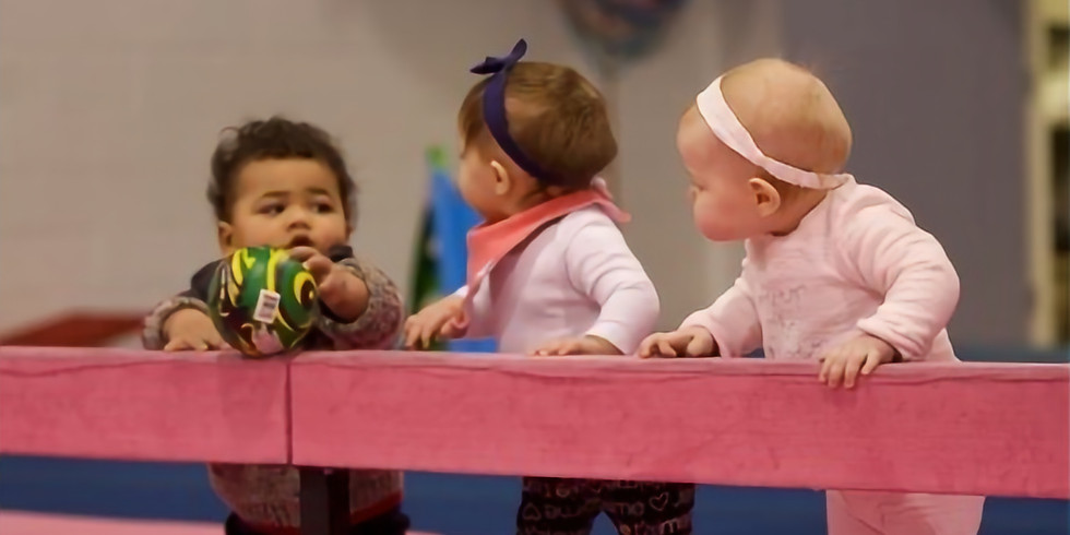 Little Crawlers Baby Gym - Waterdown
