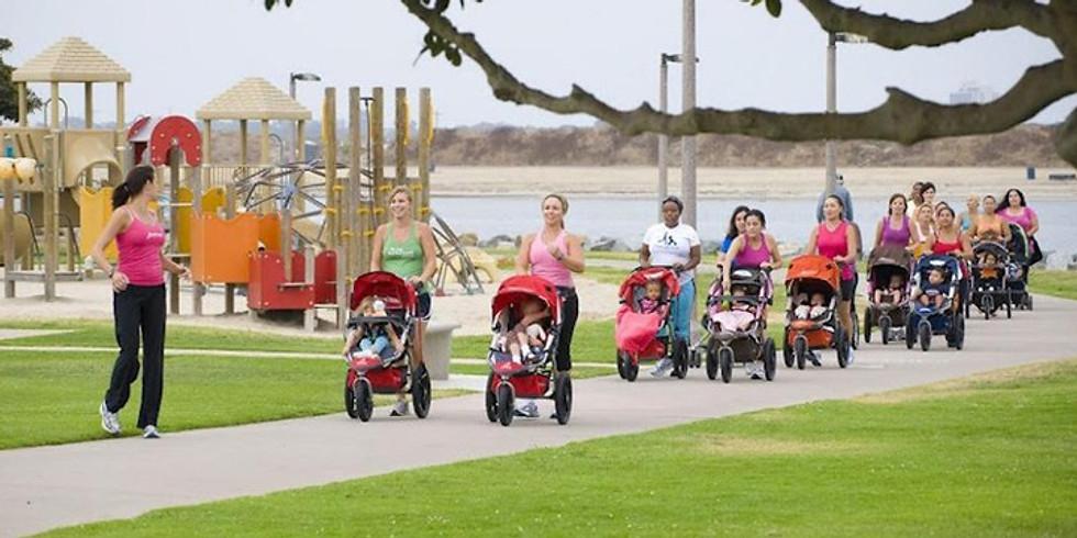 6 Week Stroller Fit- Binbrook