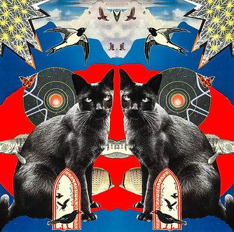 A3 Print - Trippy Kitty I