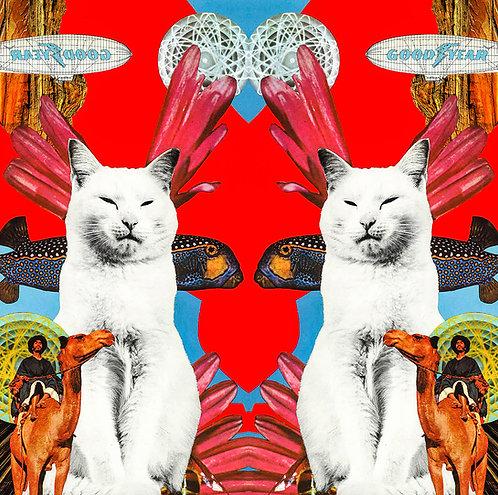 Trippy Kitty Pink - Art Print