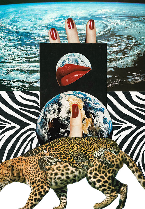 Leopards - Art Print
