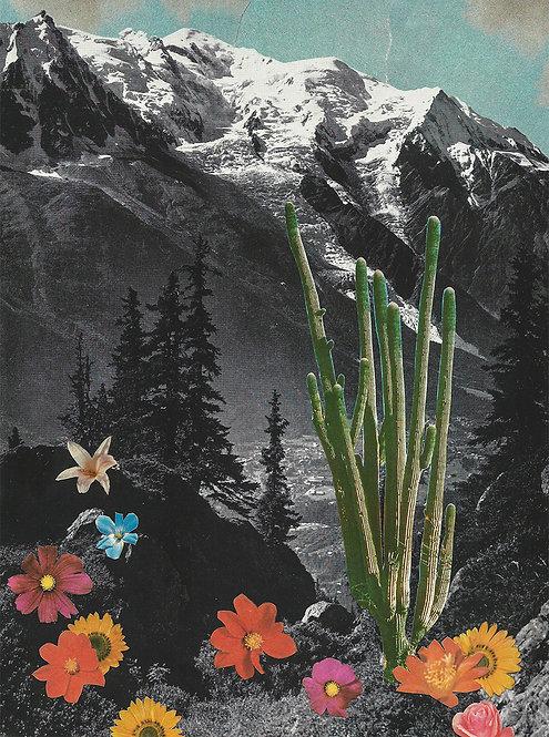 Wildflower - Art Print