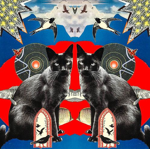 Trippy Kitty Blue - Art Print