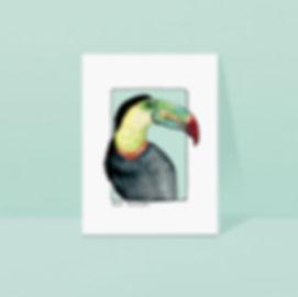 The toucan.jpg