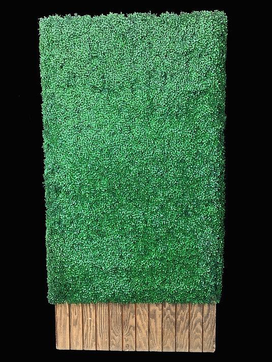 Grass Hedge 4x8.jpg