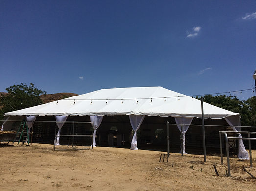 40x60 Tent with White Sheer.JPG