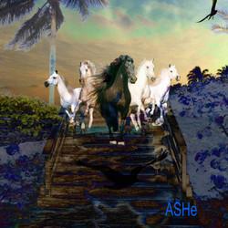 Ashe Levesque Nature'Surge 2 copy