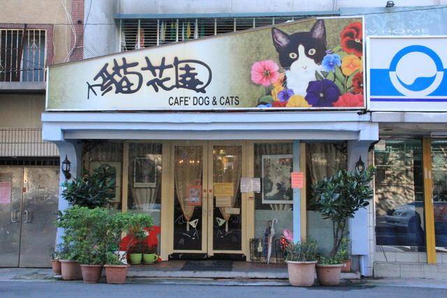 Primeiro cat café em Taiwan