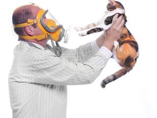 Alergia ocasionada por gatos: é possível superá-la?