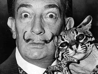 Artistas famosos e seus gatos