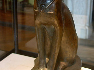Gatos e história: de sagrados a amaldiçoados