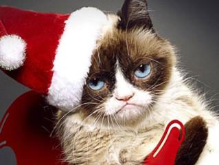 16 Gatos no Espírito Natalino