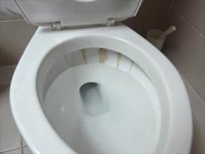 WC: Ablagerungen in der Schüssel