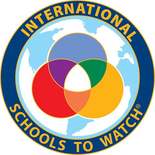STW International Pin