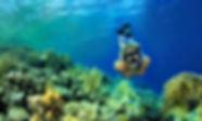 snorkeling in playas del coco playa panama costa rica
