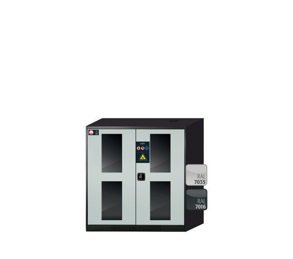 Cabinet for chemicals CS-CLASSIC-G modelCS.110.105.WDFW
