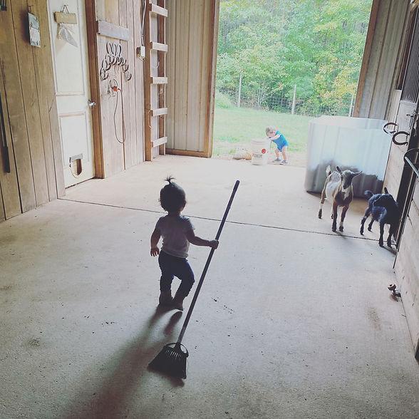 Reagan working the barn.JPG