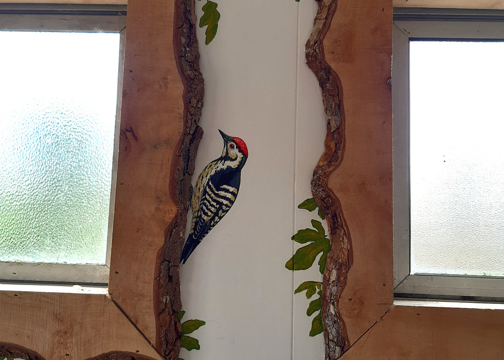 Find the woodpecker