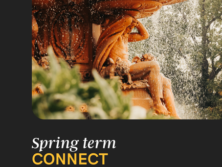 Spring Connect Brochure