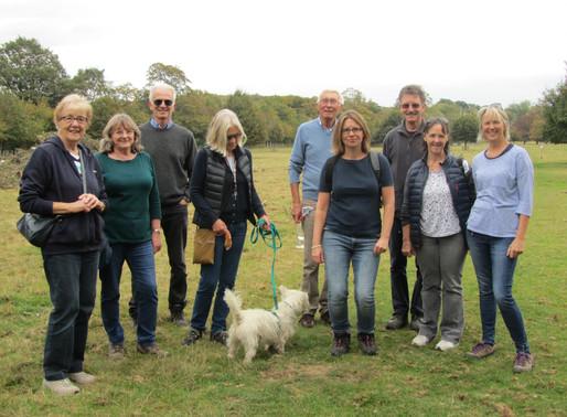 Feedback - Walking Group