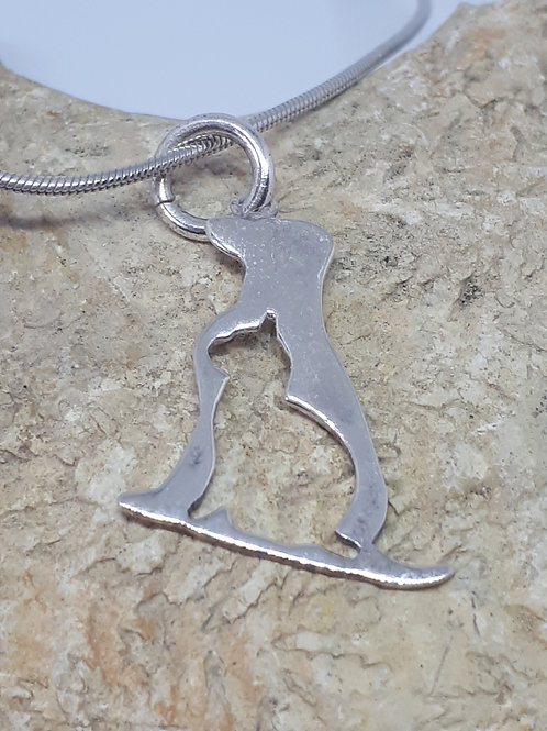 Sterling silver dog/cat lover necklace